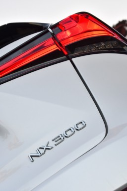 Lexus NX300_121